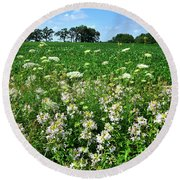 Roadside Wildflowers In Mchenry County Round Beach Towel