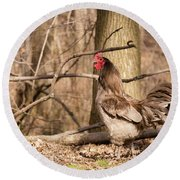 Rooster In The Woods Round Beach Towel