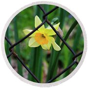 1 Sad Daffy Behind Bars Round Beach Towel