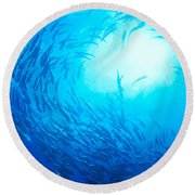 School Of Bigeye Jacks Round Beach Towel