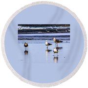 Sea Birds Round Beach Towel