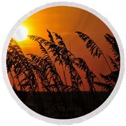 Sea Oats At Sunset Round Beach Towel