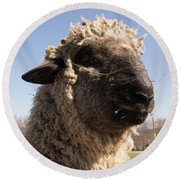 Sheep Face Round Beach Towel