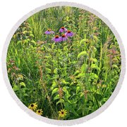 Shelley Kelly Prairie Wildflowers Round Beach Towel