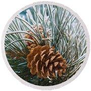 Snowy Pine Cones Round Beach Towel