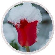 Snowy Red Riding Hood Round Beach Towel