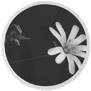 Solitary Beauty Round Beach Towel