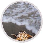 Spider Conch Shell Round Beach Towel