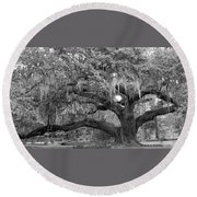 Sprawling Live Oak Round Beach Towel