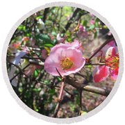 Springtime In The South Round Beach Towel