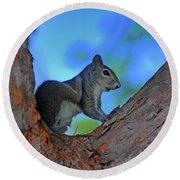 1- Squirrel Round Beach Towel