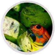 Strawberry Poison Dart Frog Round Beach Towel