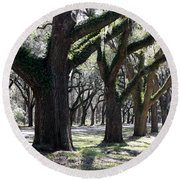 Strong Trees In The South Round Beach Towel