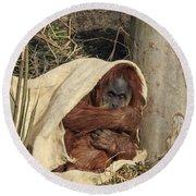 Sumatran Orangutang - Round Beach Towel