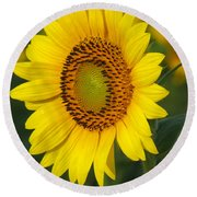 Sunflower Round Beach Towel