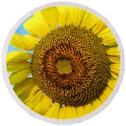 Sunflower Series Round Beach Towel