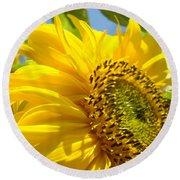 Sunflowers Art Prints Sun Flower Giclee Prints Baslee Troutman Round Beach Towel