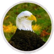 The Great Bald Eagle Round Beach Towel