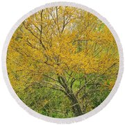 The Leaning Tree Round Beach Towel