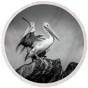 The Pelicans Round Beach Towel