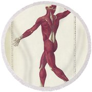The Science Of Human Anatomy Round Beach Towel