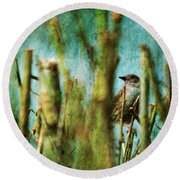The Thrush Round Beach Towel
