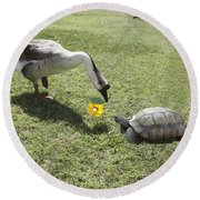 The Turtle And The Goose Round Beach Towel