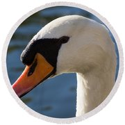 The Watchful Swan Round Beach Towel