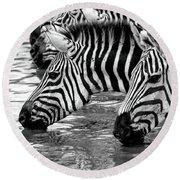 Thirsty Zebras Round Beach Towel