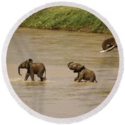 Tiny Elephants Round Beach Towel