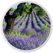 Tree In Lavender Round Beach Towel