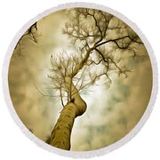 Tree Top In The Clouds Round Beach Towel