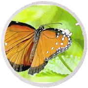 Tropical Queen Butterfly Framing Image Round Beach Towel