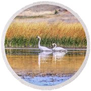 Tranquil Trumpeter Swans Round Beach Towel