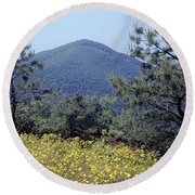 143419-turk Mountain Overlook  Round Beach Towel