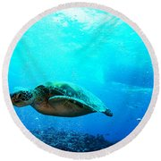 Turtle Cove Round Beach Towel