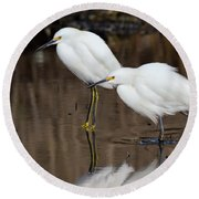 Two Snowy Egrets Round Beach Towel