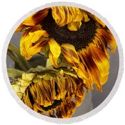 Two Sunflowers Tournesols Round Beach Towel