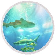 Undersea Shark Background Round Beach Towel