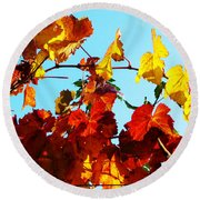 Vineyard 12 Round Beach Towel
