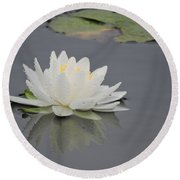 Water Lily Collection Round Beach Towel