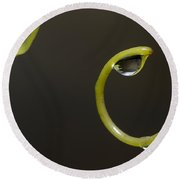 Waterdrops Catch By Grapevines Round Beach Towel
