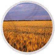 Wheat Crop In A Field, North Dakota, Usa Round Beach Towel