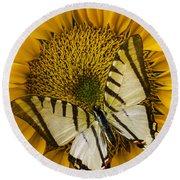 White Butterfly On Sunflower Round Beach Towel