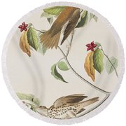 Wood Thrush Round Beach Towel