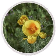 Yellow And Orange Poppy Round Beach Towel