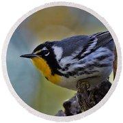 Yellow Throat Warbler Round Beach Towel
