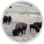 Yellowstone Bison Round Beach Towel