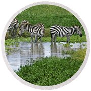 Zebras In The Swamp Round Beach Towel