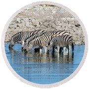 Etosha - Namibia Round Beach Towel
